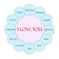 I love you circular word concept diagram in pink and blue with great terms such as feelings romance couple lust kiss and more Stock Photo