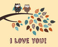 I Love You Owl Bird Card