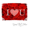 I love you text over red roses Royalty Free Stock Images