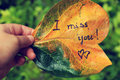 I miss you on old leaf Royalty Free Stock Photo