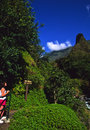 Iao Needle Maui Royalty Free Stock Photo
