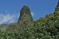 Iao Needle Royalty Free Stock Photo