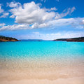 Ibiza cala bassa beach with turquoise mediterranean sea at balearic islands Royalty Free Stock Photo