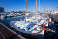 Ibiza san antonio abad sant antonio de portmany marina at balearic islands Royalty Free Stock Photography