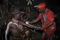 Iboga ritual bwiti gabon is a religious initiation ceremony performed by the mitsogo and fang people of using the hallucinogenic Stock Photo