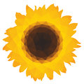 Ic ne de tournesol avec les polygones triangulaires Photos stock