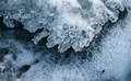 Ice above forest stream Royalty Free Stock Photo