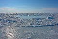 Ice of the arctic ocean off the coast of chukotka Royalty Free Stock Photo