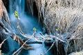 Ice-cold поток Стоковое Фото