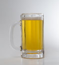 Ice cold beer in a mug Royalty Free Stock Photo