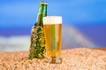 Ice cold green unlabelled bottle of beer in the refreshing lager or soda standing upright golden sand on a tropical beach under Royalty Free Stock Photos