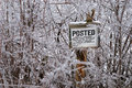 Ice covered posted sign Stock Images
