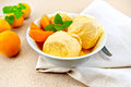 Ice cream apricot with mint in white bowl on napkin Royalty Free Stock Photo