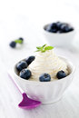 Ice cream with blueberries Royalty Free Stock Images