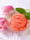 Ice cream and fresh tulips scoops of pink Royalty Free Stock Image
