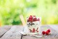 Ice cream or frozen yoghurt over green garden background Royalty Free Stock Photo