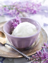 Ice cream lemon and lavender in vintage bowl selective focus Royalty Free Stock Image
