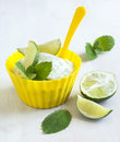 Ice cream Mojito Royalty Free Stock Photo