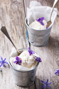 Ice cream with sugared violets served in little metal pail on old wooden table Stock Photography