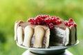Ice cream tiramisu cake Royalty Free Stock Photo