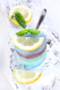 Ice cube colored in various flavors made with leaf mint and lemon Royalty Free Stock Photos