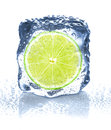 Ice cube isolated on white and lime close up Royalty Free Stock Photo