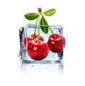 Ice cube and juicy cherries isolated on the white background Royalty Free Stock Photo
