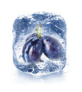 Ice cube and plum isolated Royalty Free Stock Images