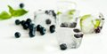 Ice cubes with blueberries and mint Royalty Free Stock Photo