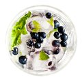 Ice cubes with blueberries and mint in glass Royalty Free Stock Photography