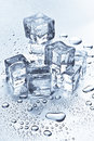 Ice cubes melting Royalty Free Stock Photo