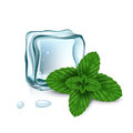 Ice cubes with mint leaves isolated on white Stock Photo