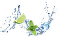 Ice cubes mint leaves and lime on a white water splash background mojito Royalty Free Stock Image