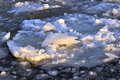 Ice floating on the river Stock Photography