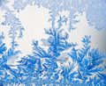 Ice flowers 08 in blue Stock Photography