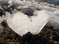 Ice heart Royalty Free Stock Image