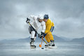 Ice hockey players on the Stock Images