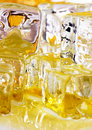 Ice honey Stock Image