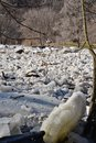 Ice jam on Humber River at first weir Royalty Free Stock Photo