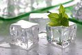 Ice and mint Royalty Free Stock Images