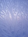 Ice natural pattern on glass frosty winter window Stock Images