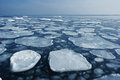 Ice on the sea to the horizon. Royalty Free Stock Image