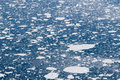 Ice sheets in the ocean Royalty Free Stock Photography