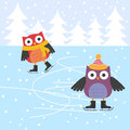 Ice skating cute owls Stock Photos