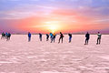 Ice skating on the Gouwzee at sunset in the Netherlands Royalty Free Stock Photo