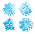 Ice snowflakes Stock Images