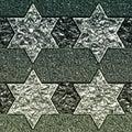 Ice stars Royalty Free Stock Photo