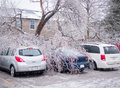 Ice Storm Damage Royalty Free Stock Photo