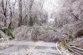 Ice winter tree road block yikes country beautiful damage Royalty Free Stock Photo
