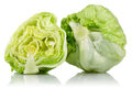 Iceberg lettuce Royalty Free Stock Photo
